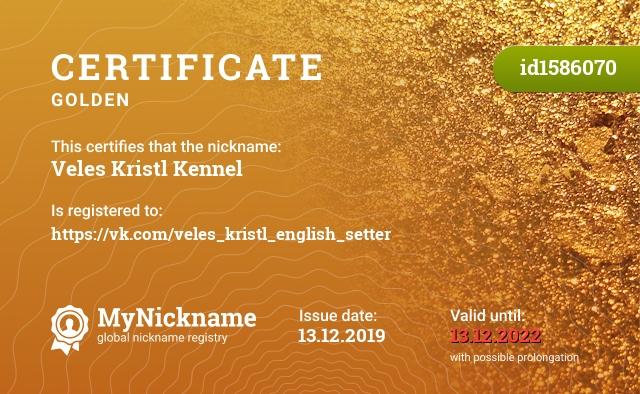 Certificate for nickname Veles Kristl Kennel is registered to: https://vk.com/veles_kristl_english_setter