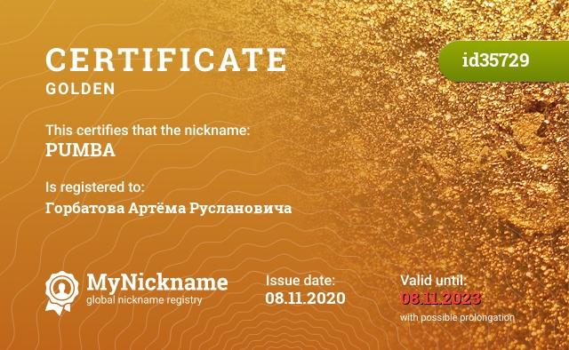 Certificate for nickname PUMBA is registered to: Горбатова Артёма Руслановича