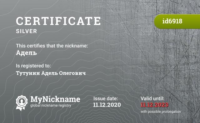 Certificate for nickname Адель is registered to: Микитенко Ирина Васильевна