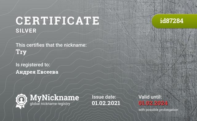 Certificate for nickname Try is registered to: Перевозчиков Артем Сергеевич