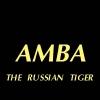 Avatar AMBA
