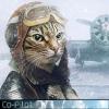 Avatar Co-Pilot