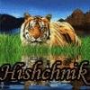 Avatar Hishchnik